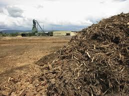 Biomassza hasznosítás